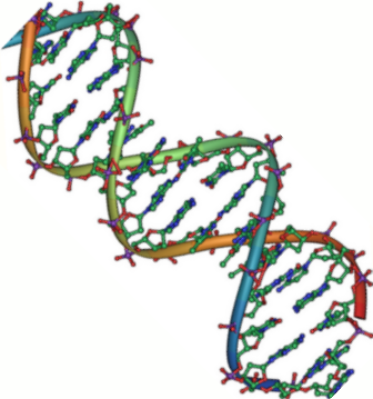 Depiction of DNA molecule